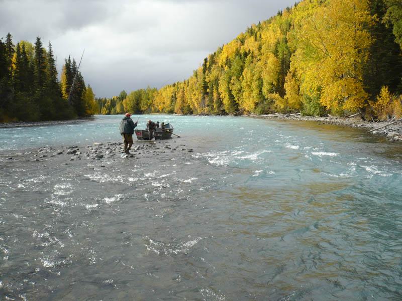 Kenai river float n fish guided trips for Kenai river fishing